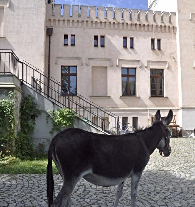 Palac-Srodka-10